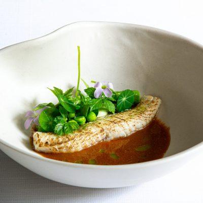 Grauwe poon, met groene curry, peulvruchten en gin seng